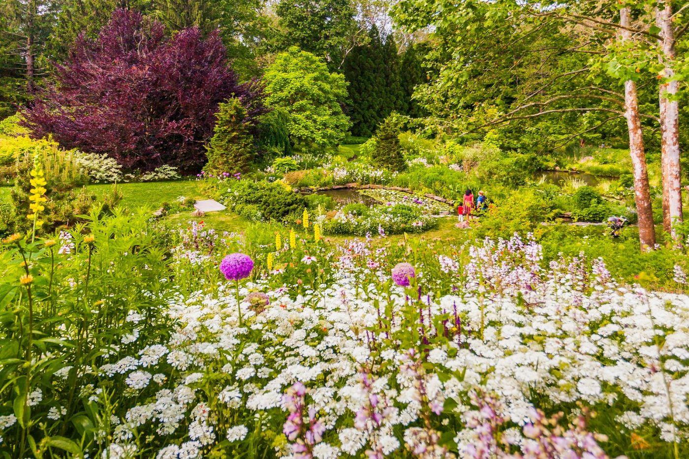 Chanticleer花园,点亮心灵_图1-12