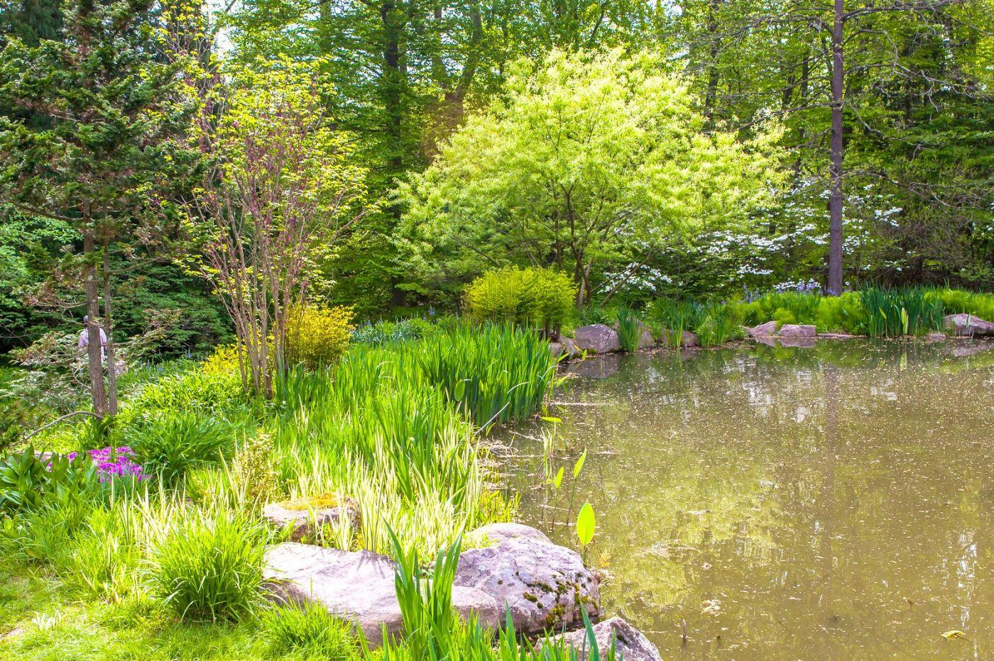 Chanticleer花园,点亮心灵_图1-2