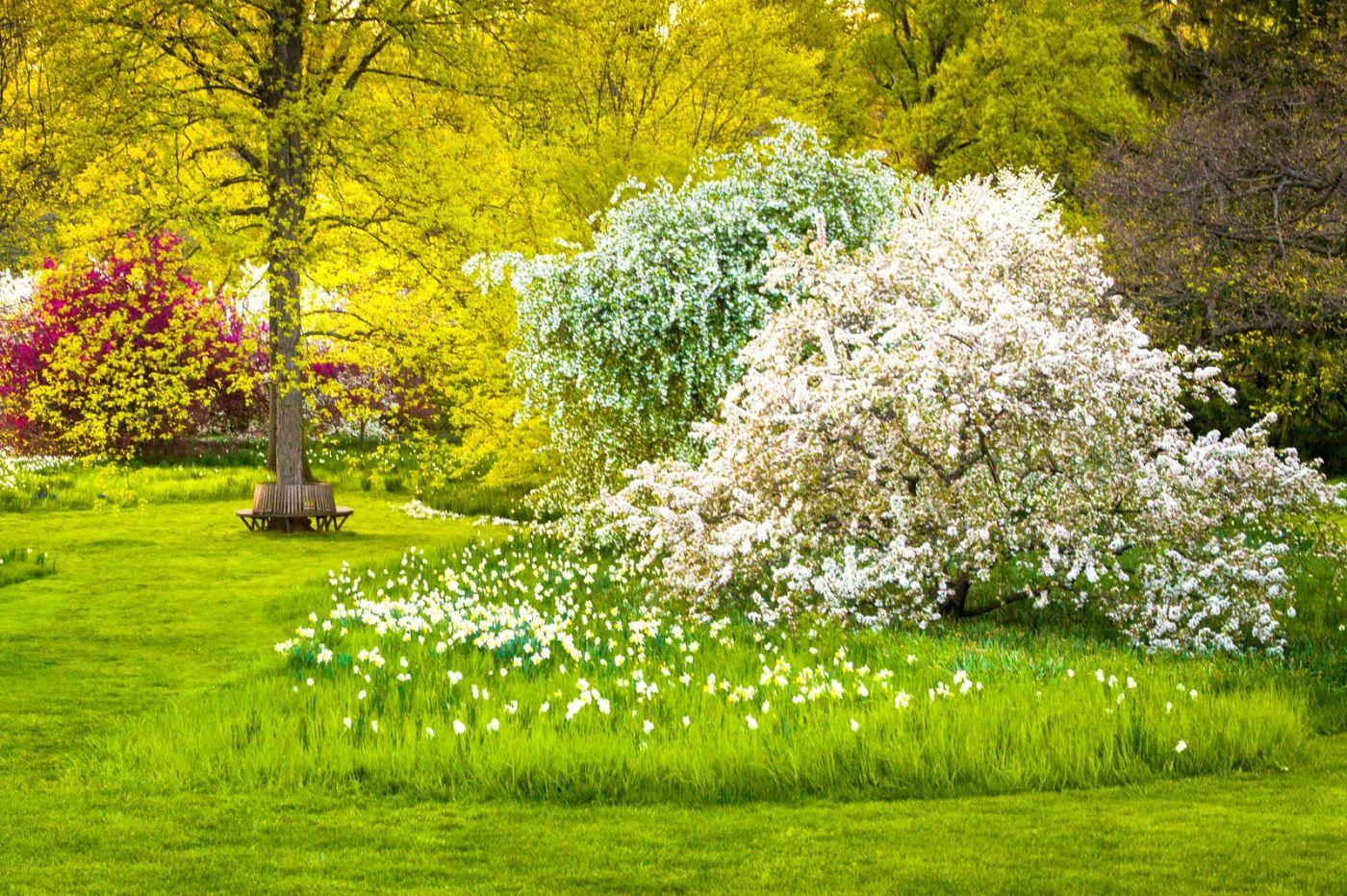Chanticleer花园,点亮心灵_图1-17