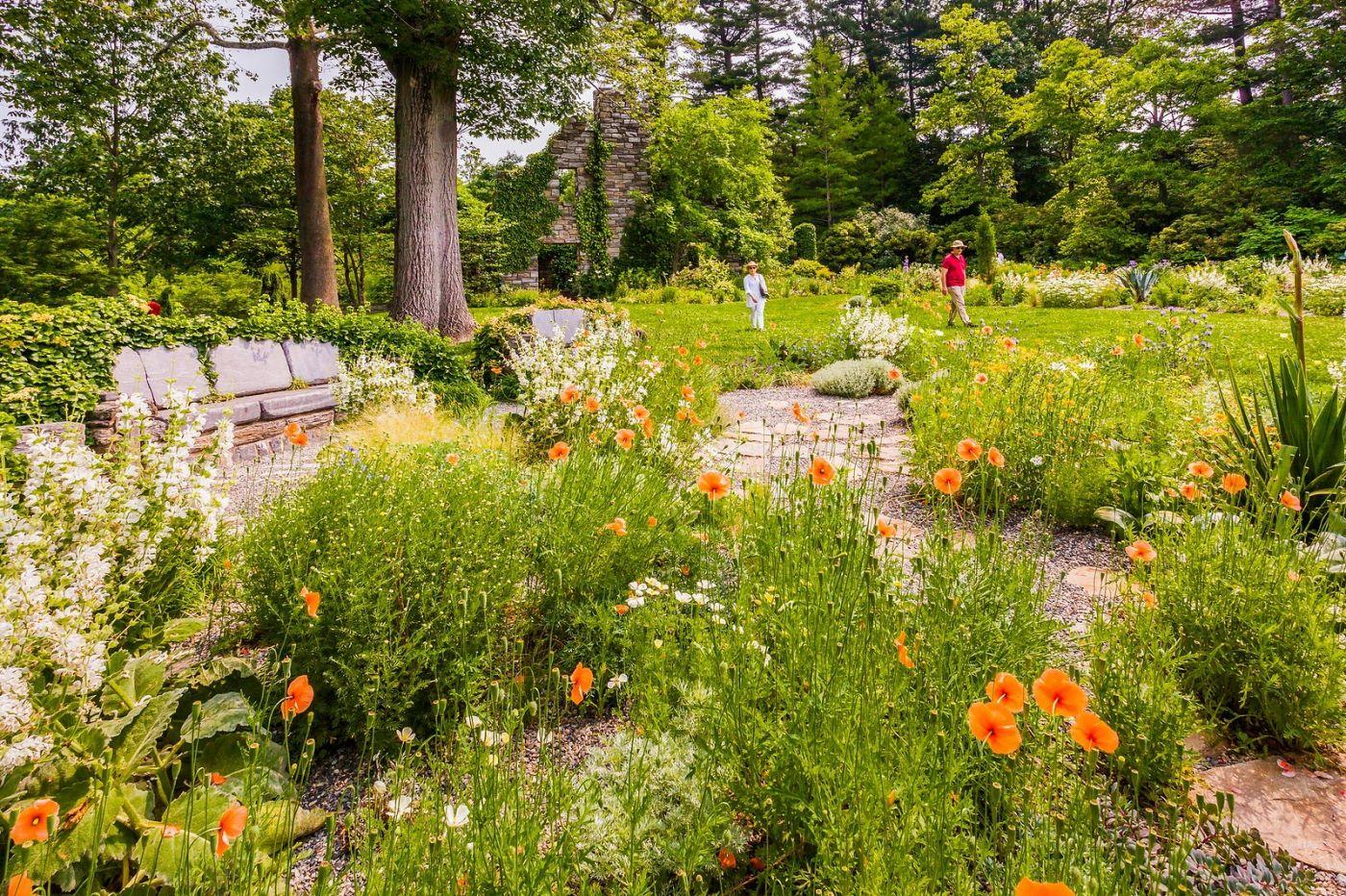 Chanticleer花园,点亮心灵_图1-32