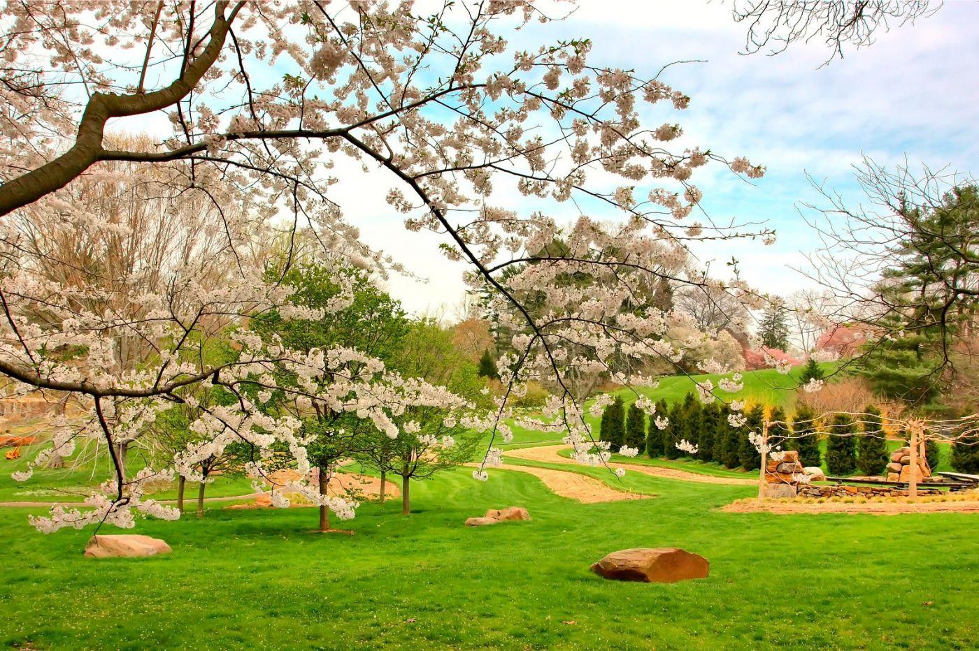 Chanticleer花园,点亮心灵_图1-31