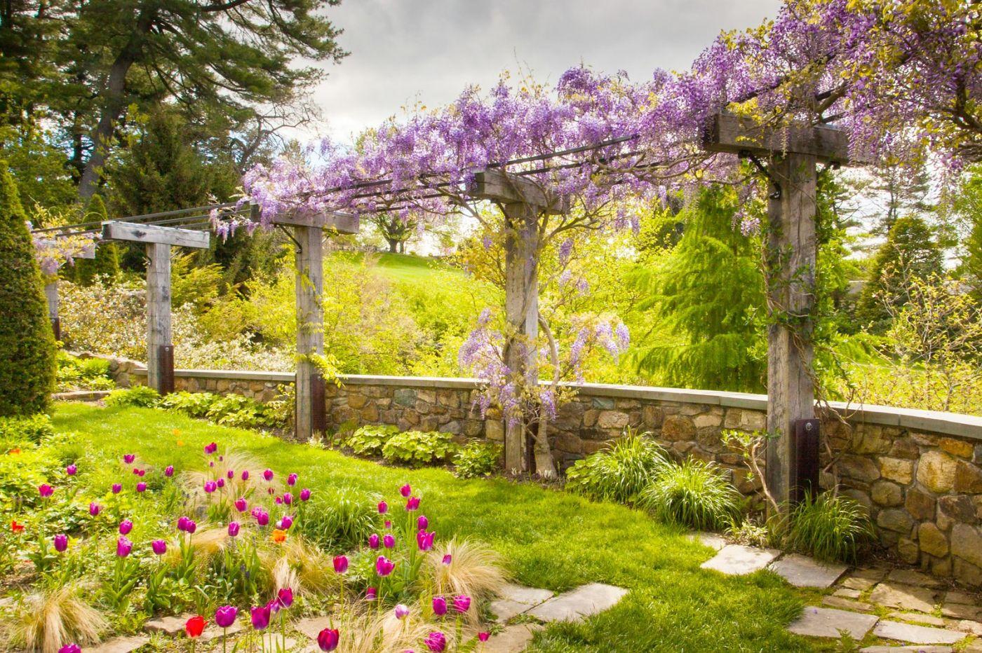 Chanticleer花园,点亮心灵_图1-37