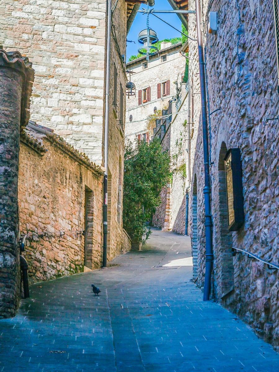 意大利阿西西(Assisi), 很有情调的小城_图1-11