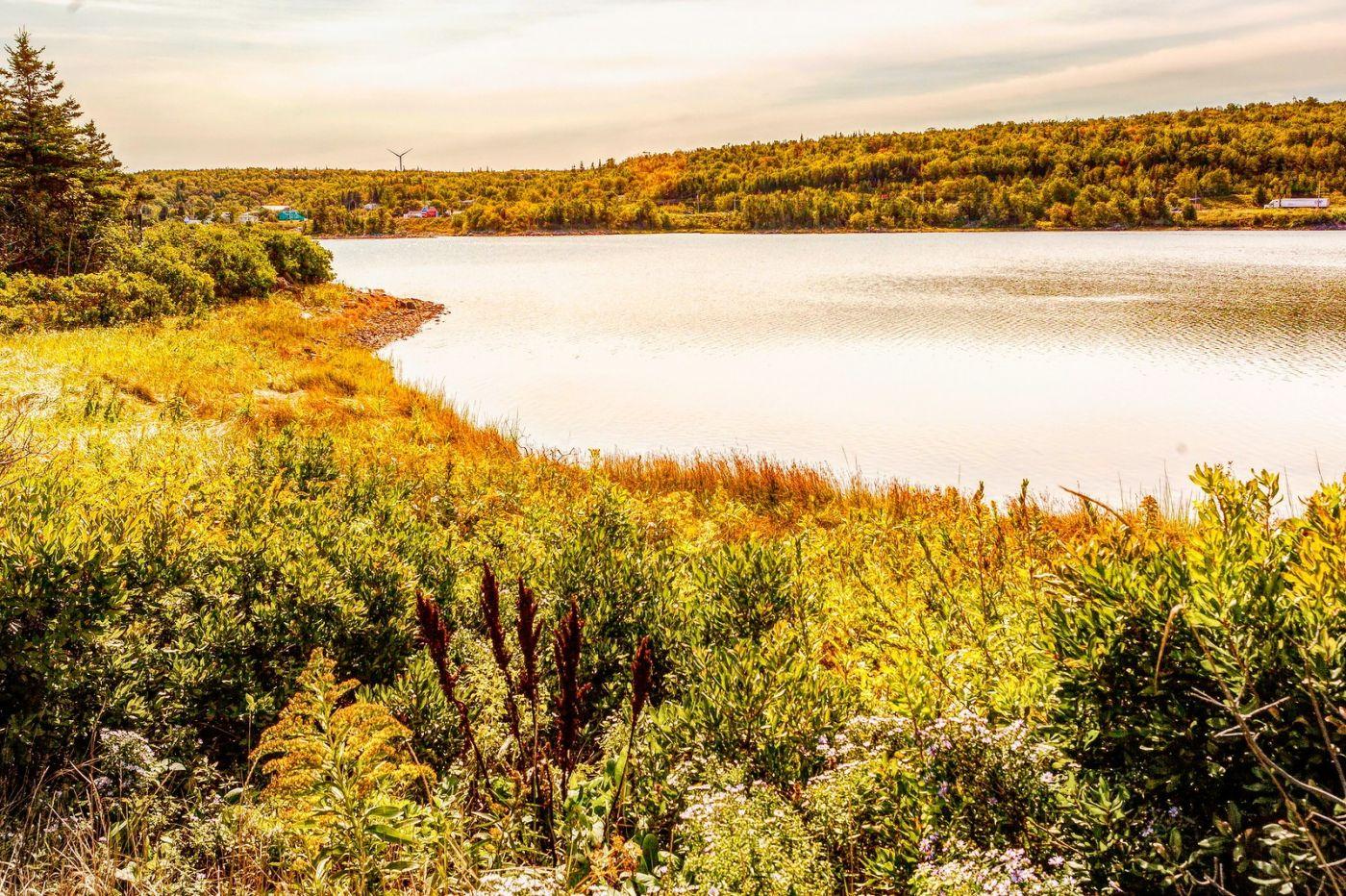 加拿大路途,水边抓拍_图1-7
