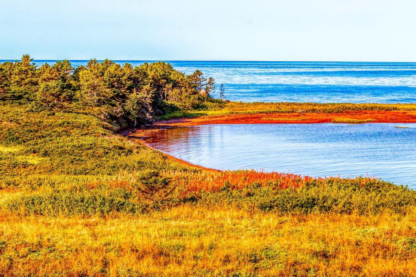 加拿大路途,水边抓拍_图1-12