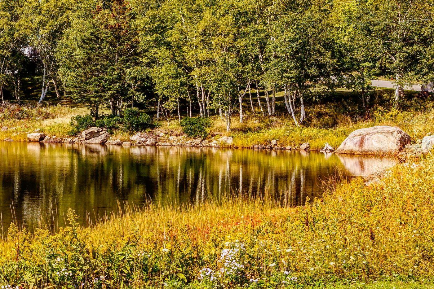 加拿大路途,水边抓拍_图1-21