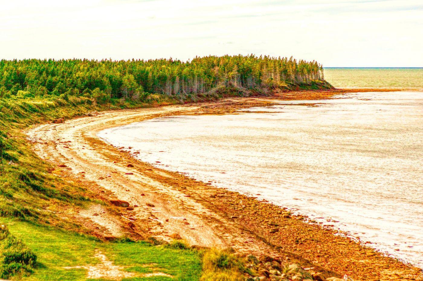 加拿大路途,水边抓拍_图1-25