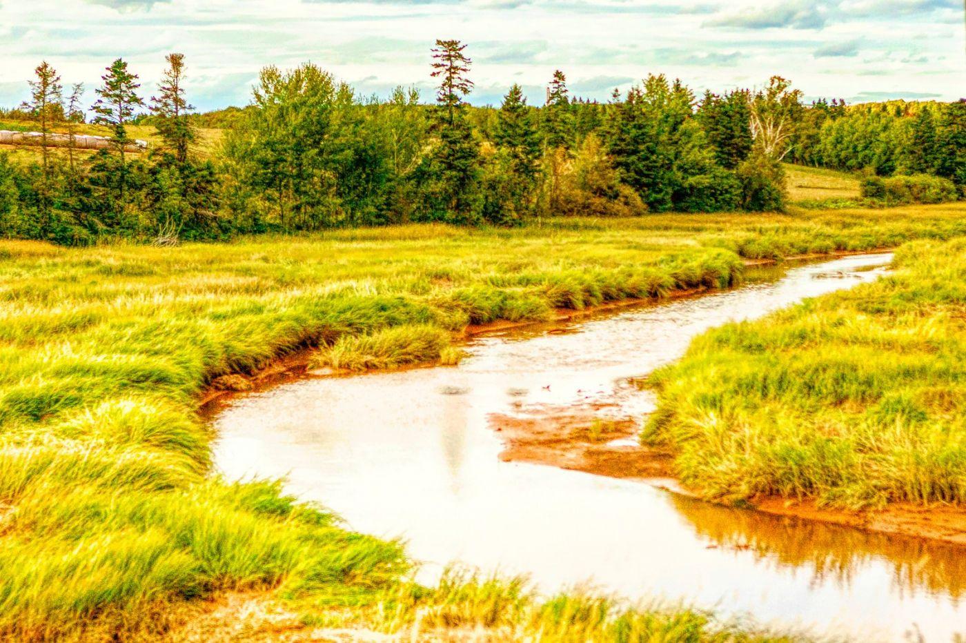 加拿大路途,水边抓拍_图1-27