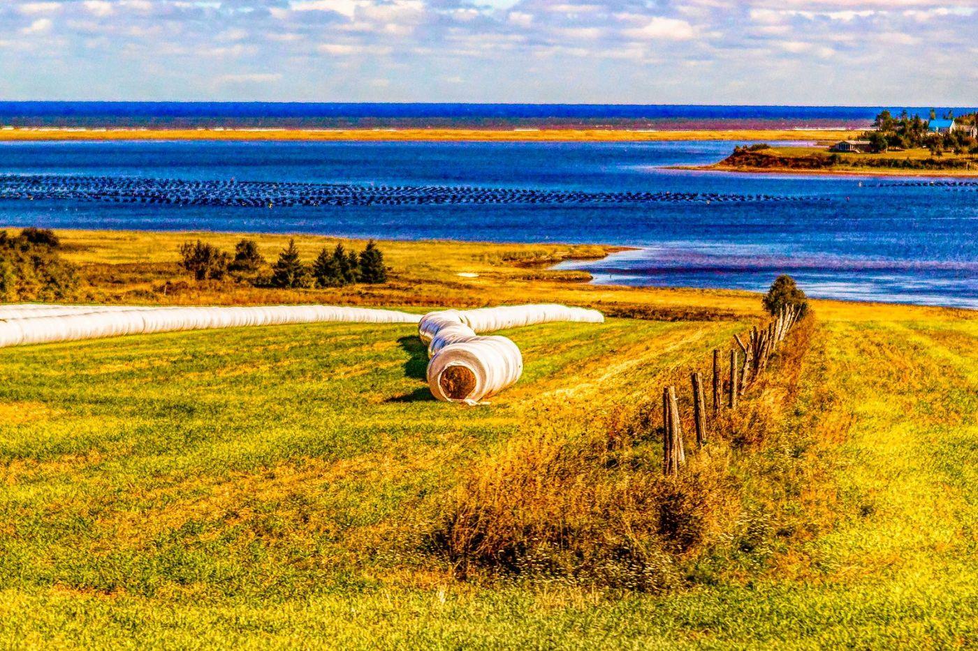 加拿大路途,水边抓拍_图1-32