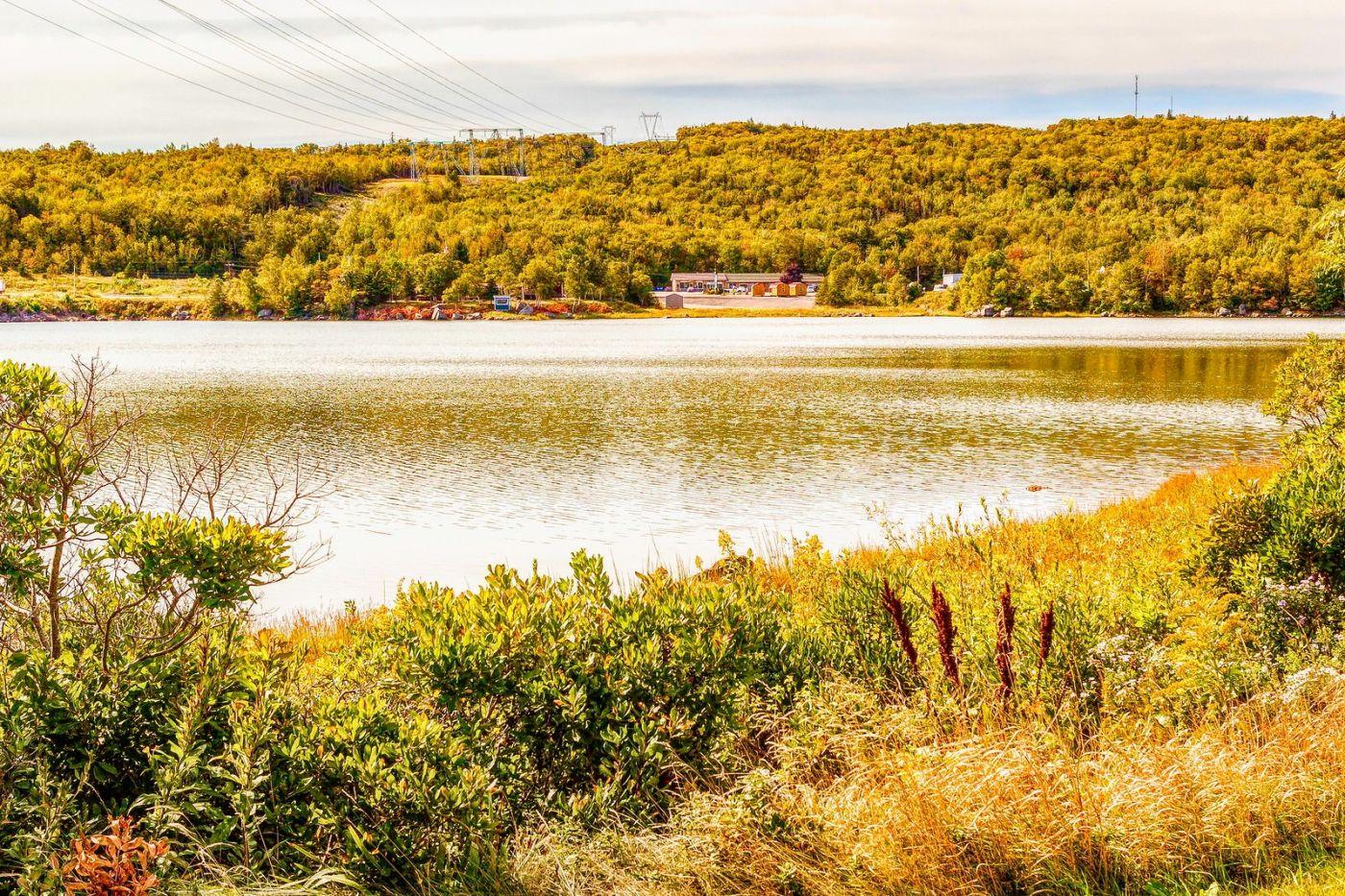 加拿大路途,水边抓拍_图1-34