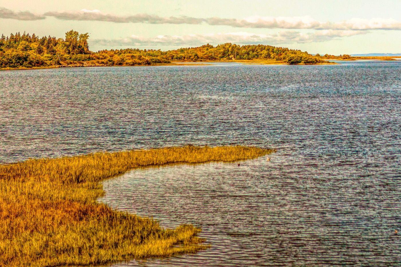 加拿大路途,水边抓拍_图1-29