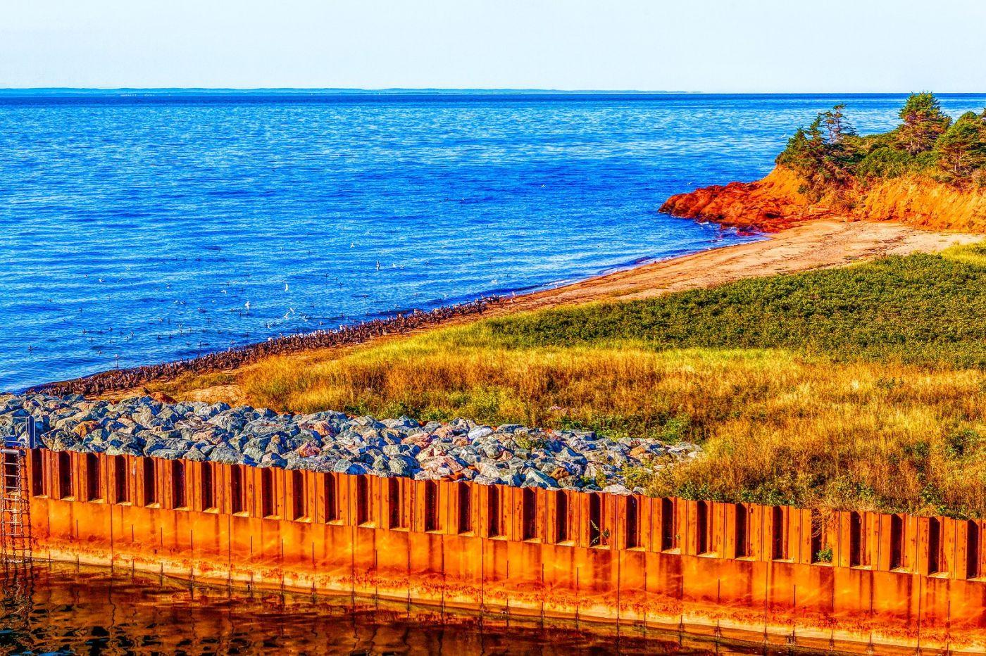加拿大路途,水边抓拍_图1-39