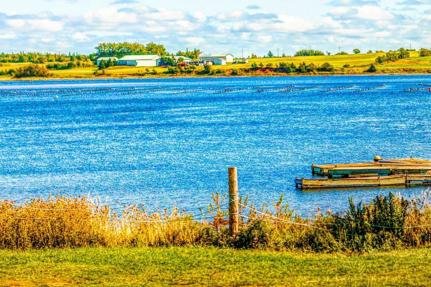加拿大路途,水边抓拍_图1-38