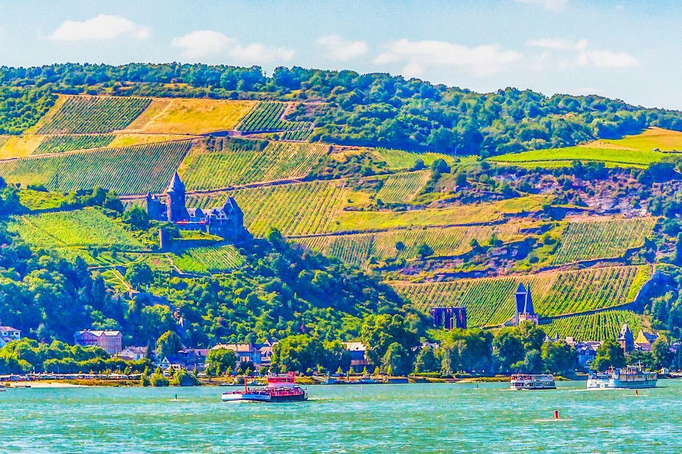 畅游莱茵河,河中的城堡_图1-5