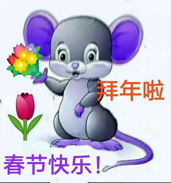 老鼠成亲_图1-1