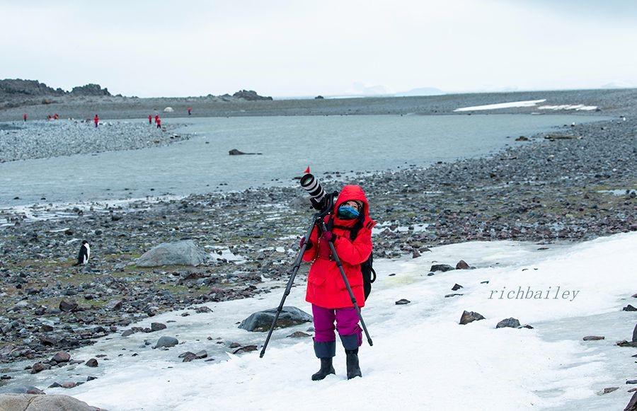 【小虫摄影】南极摄影_图1-5