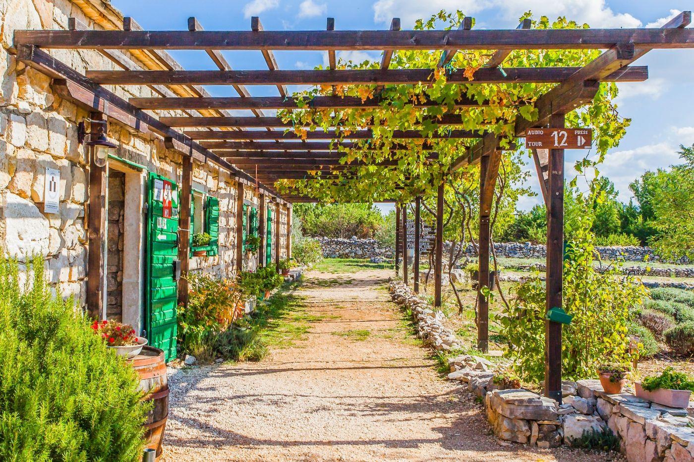克罗地亚达尔马提亚村,独特的地域风貌_图1-12