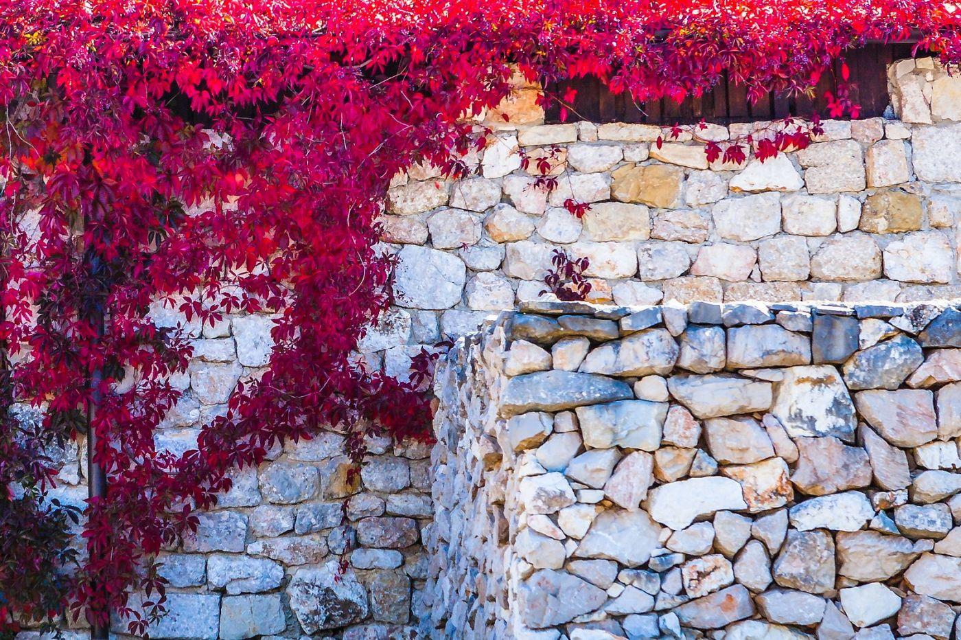 克罗地亚达尔马提亚村,独特的地域风貌_图1-23