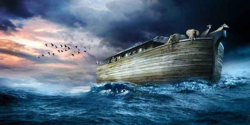 江淳:人们在寻求一条大船逃离_图1-1