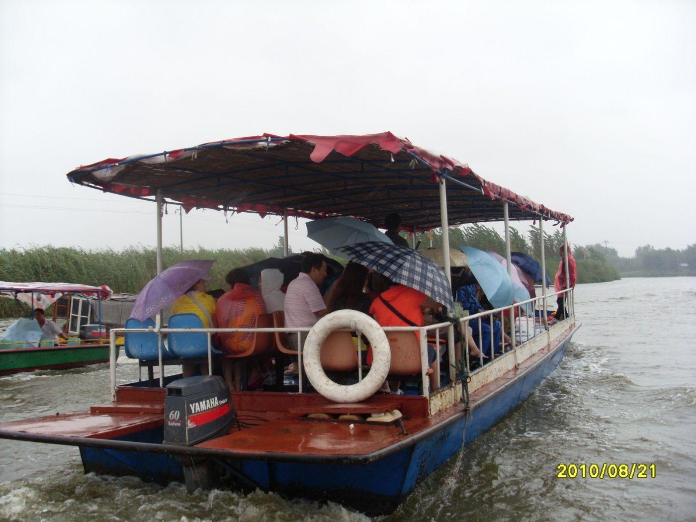 雨中畅游白洋淀_图1-4
