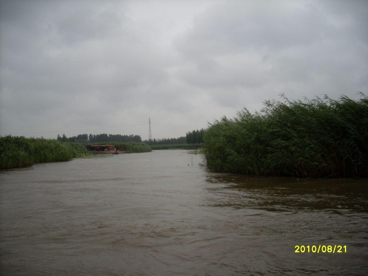 雨中畅游白洋淀_图1-5
