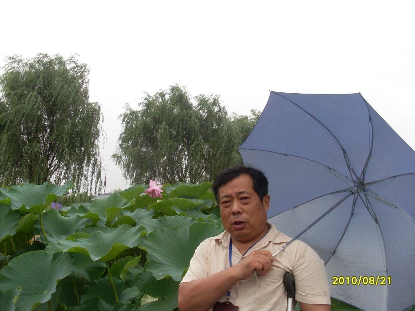 雨中畅游白洋淀_图1-9