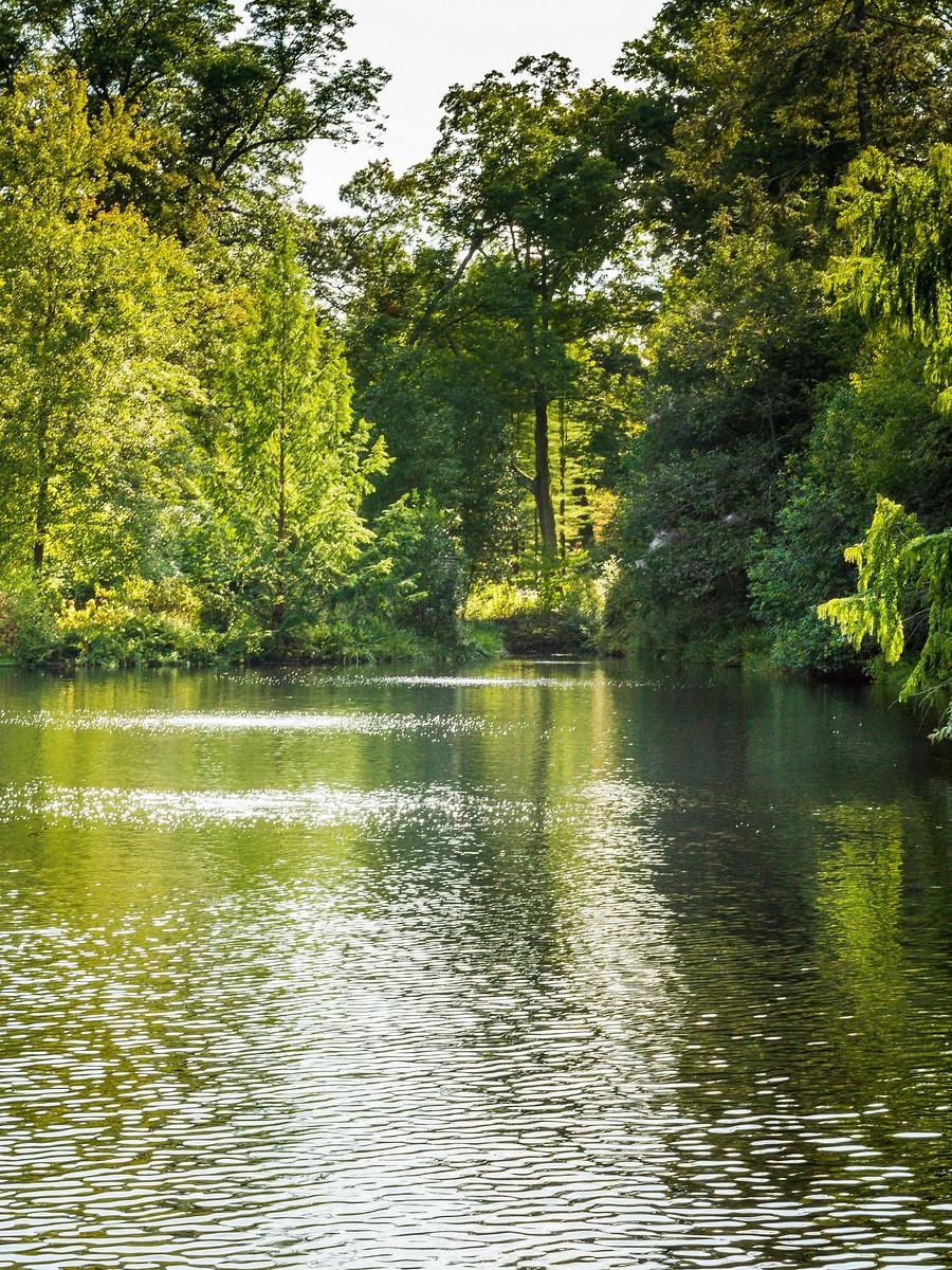 宾州长木公园,跳动的喷泉_图1-34
