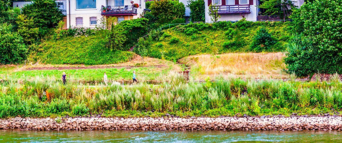 畅游莱茵河,山坡上的耕田_图1-9