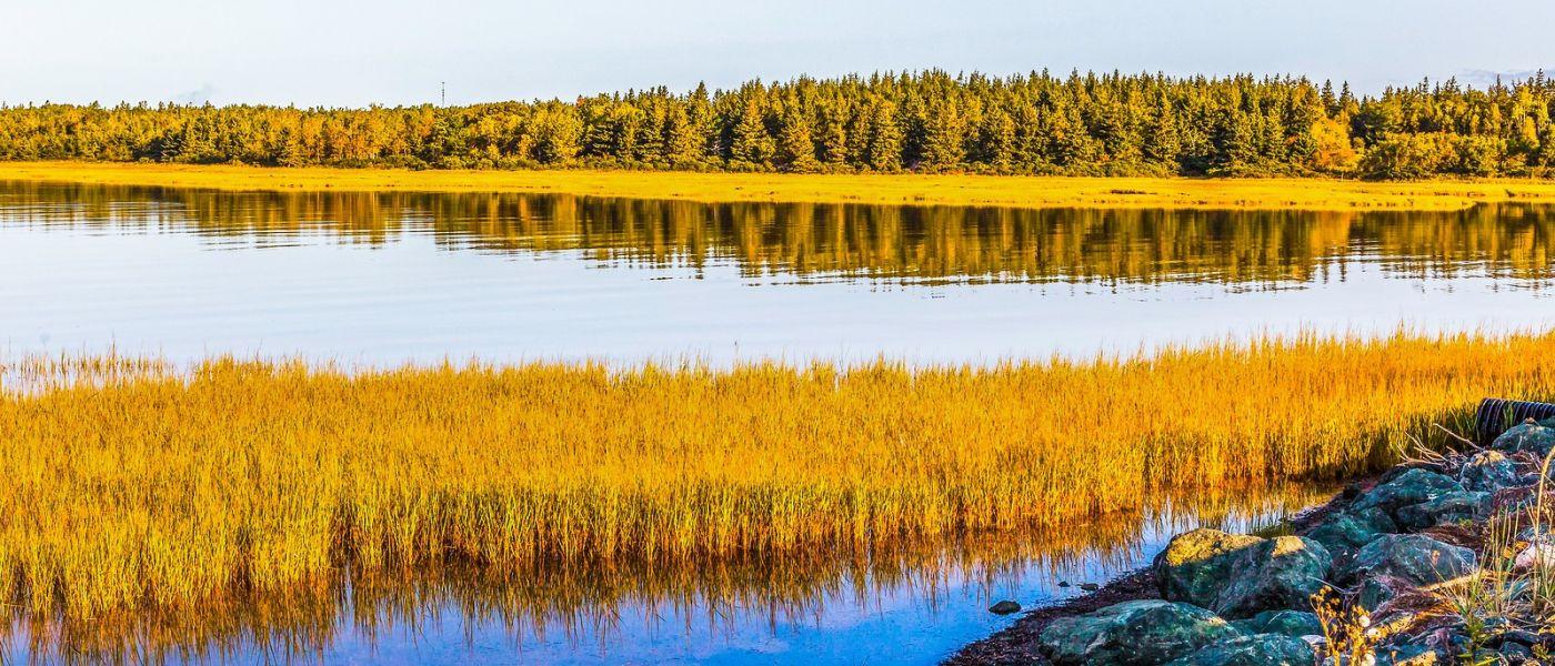加拿大路途,看景作梦_图1-4