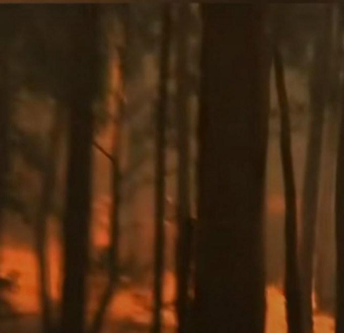 燃烧了近七个月的澳洲大火为何突然灭了?原因是什么?老天爷第一功 ..._图1-3