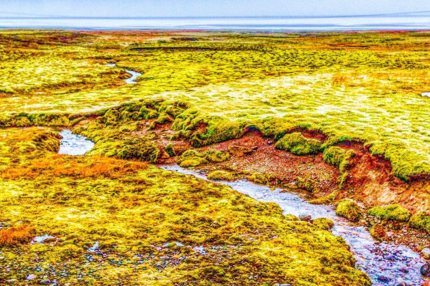 冰岛风采,延伸视野_图1-40