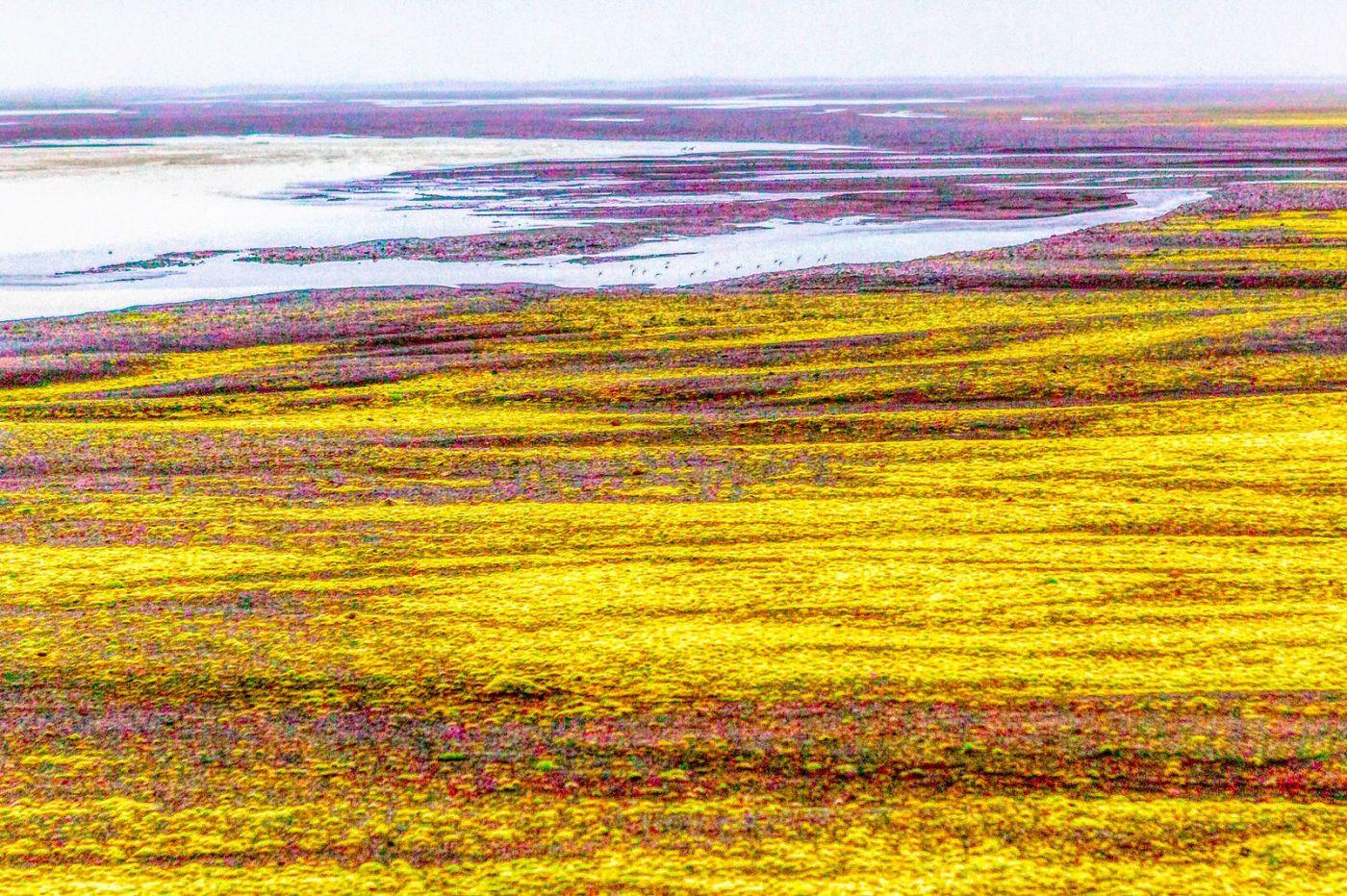 冰岛风采,延伸视野_图1-33
