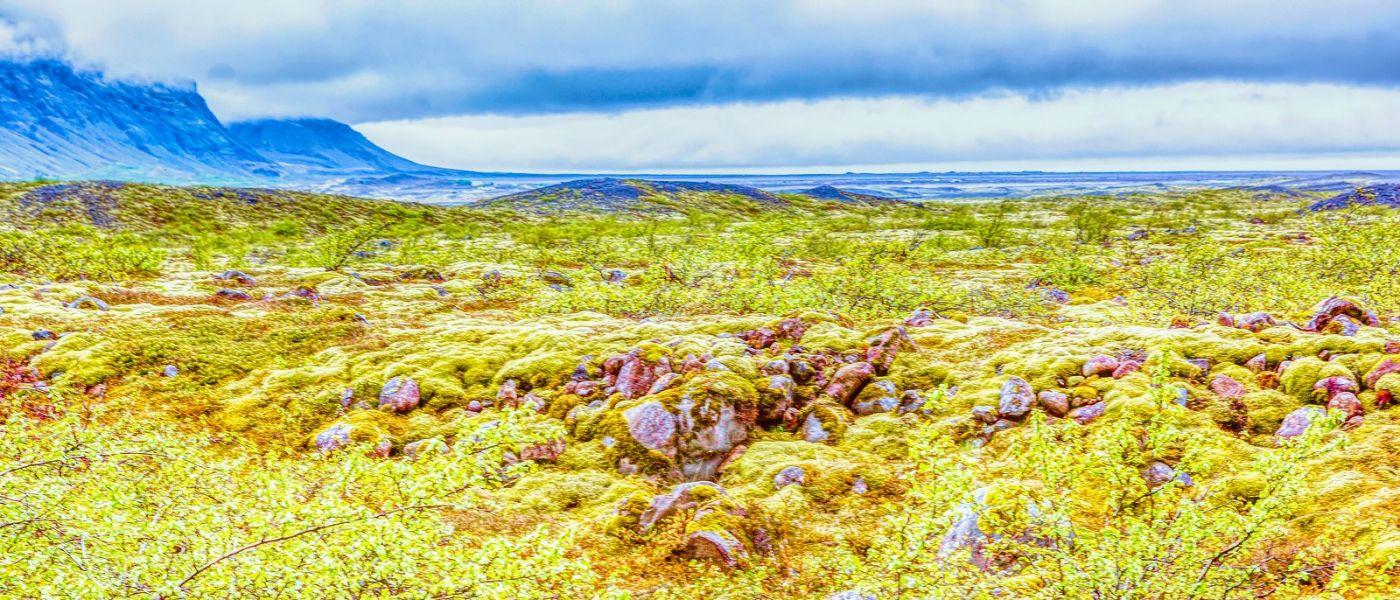 冰島瓦特納冰川(Vatna Glacier),很壯觀_圖1-40