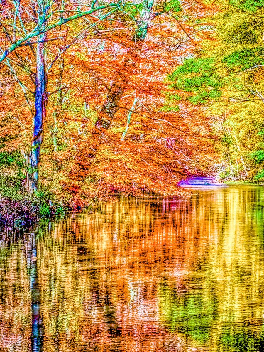賓州雷德利克里克公園(Ridley creek park),金色的季節_圖1-20