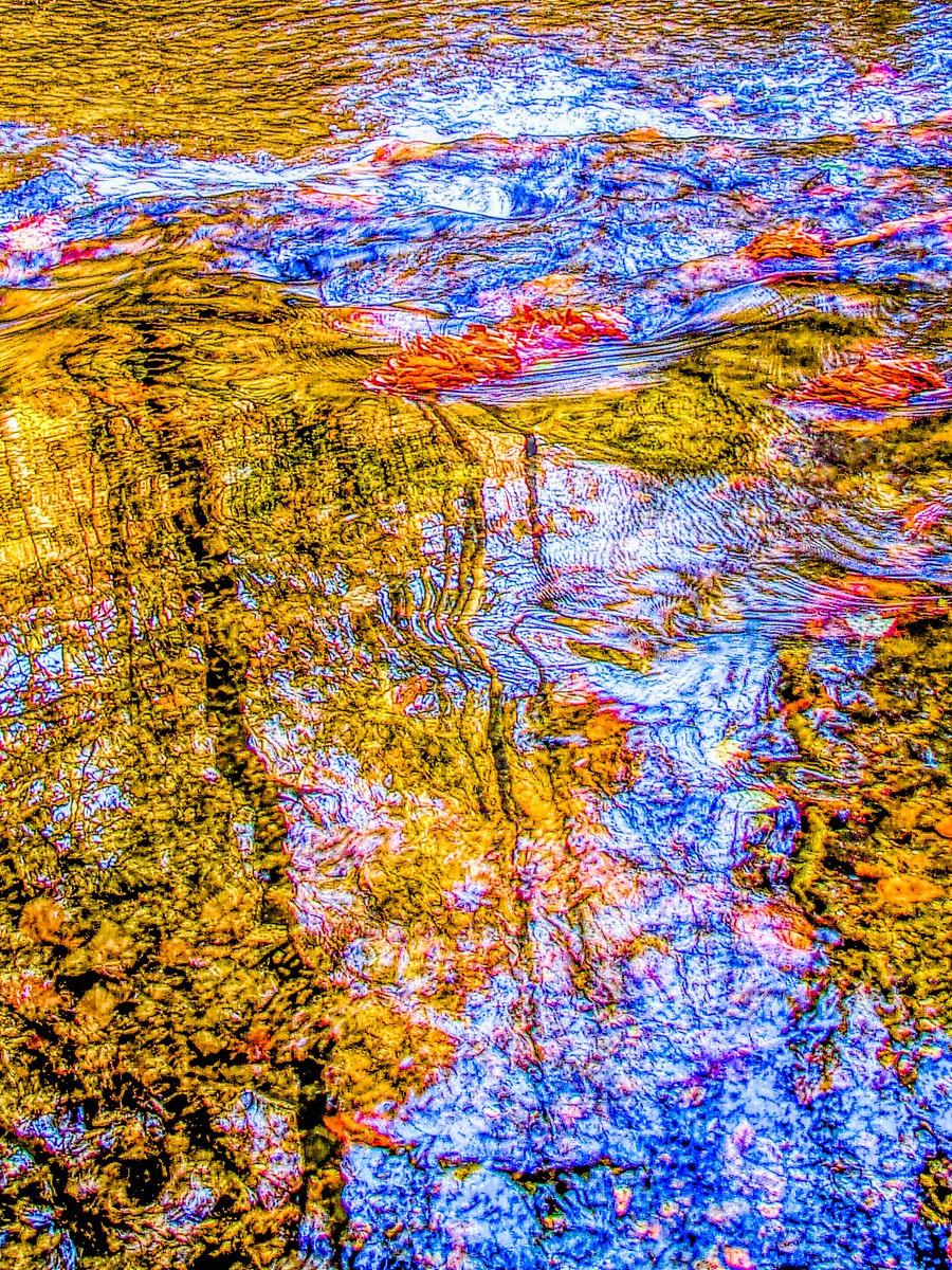 賓州雷德利克里克公園(Ridley creek park),金色的季節_圖1-8
