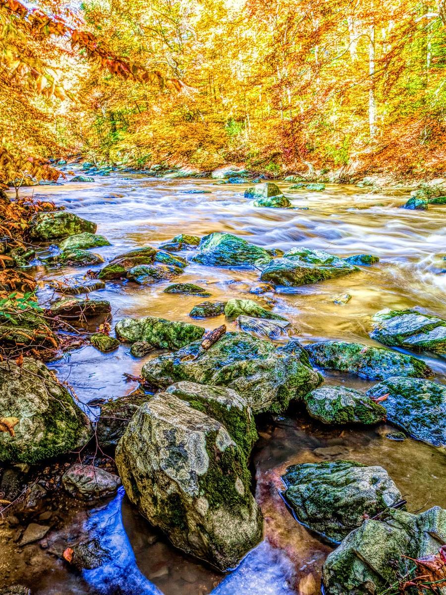 賓州雷德利克里克公園(Ridley creek park),金色的季節_圖1-35