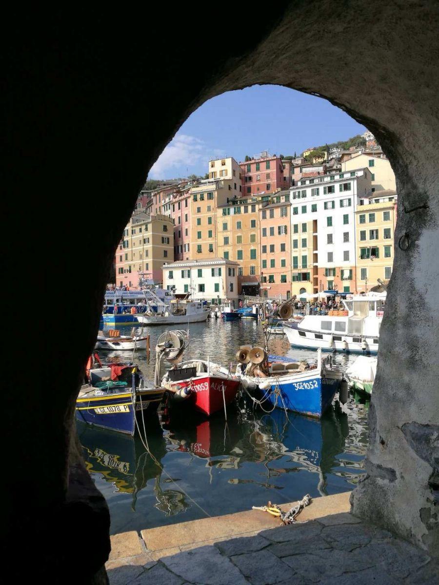 红得发紫的小渔村(意大利)_图1-4