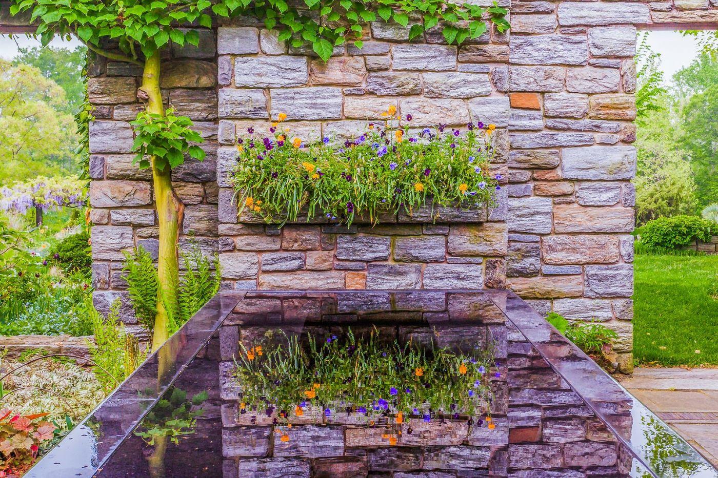 Chanticleer花园,一景一画_图1-19