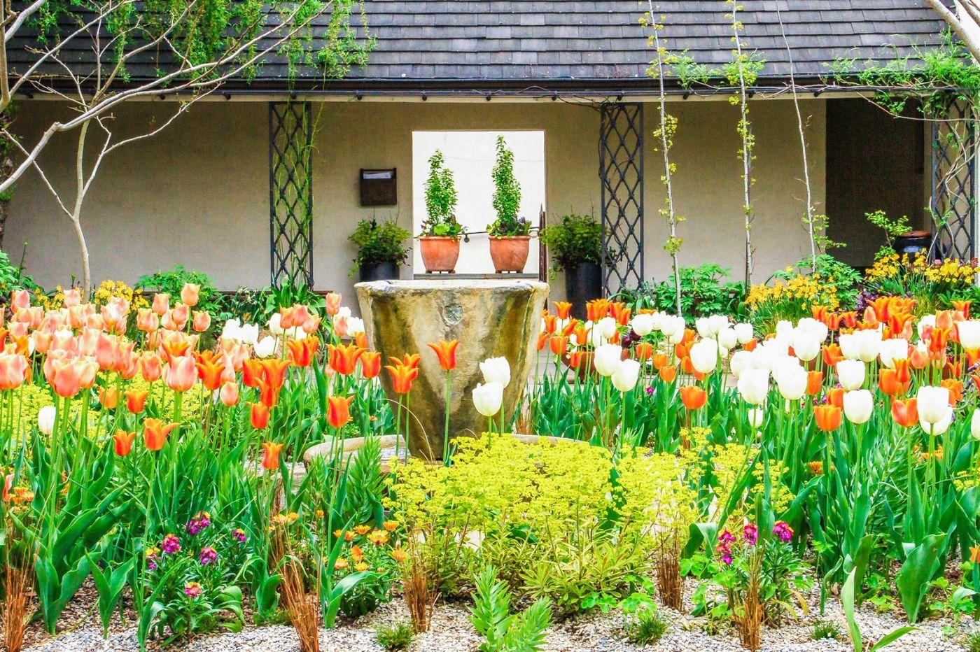Chanticleer花园,一景一画_图1-18