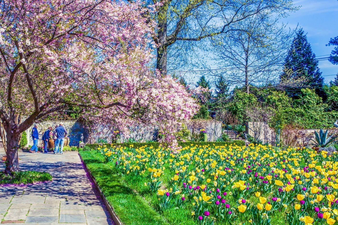 Chanticleer花园,一景一画_图1-5