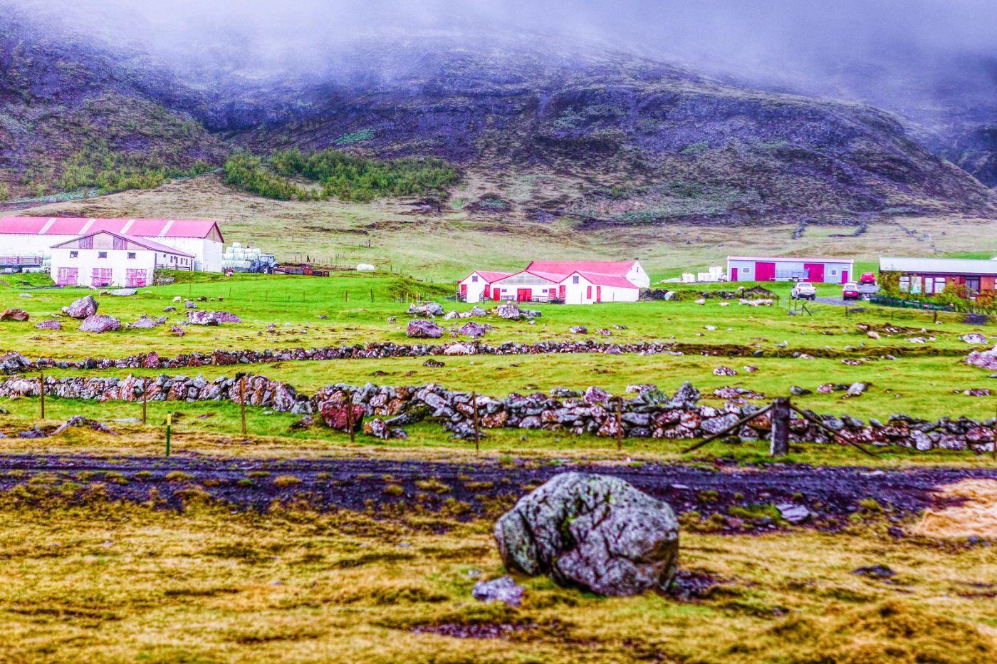冰岛风采,大山民舍羊群_图1-19