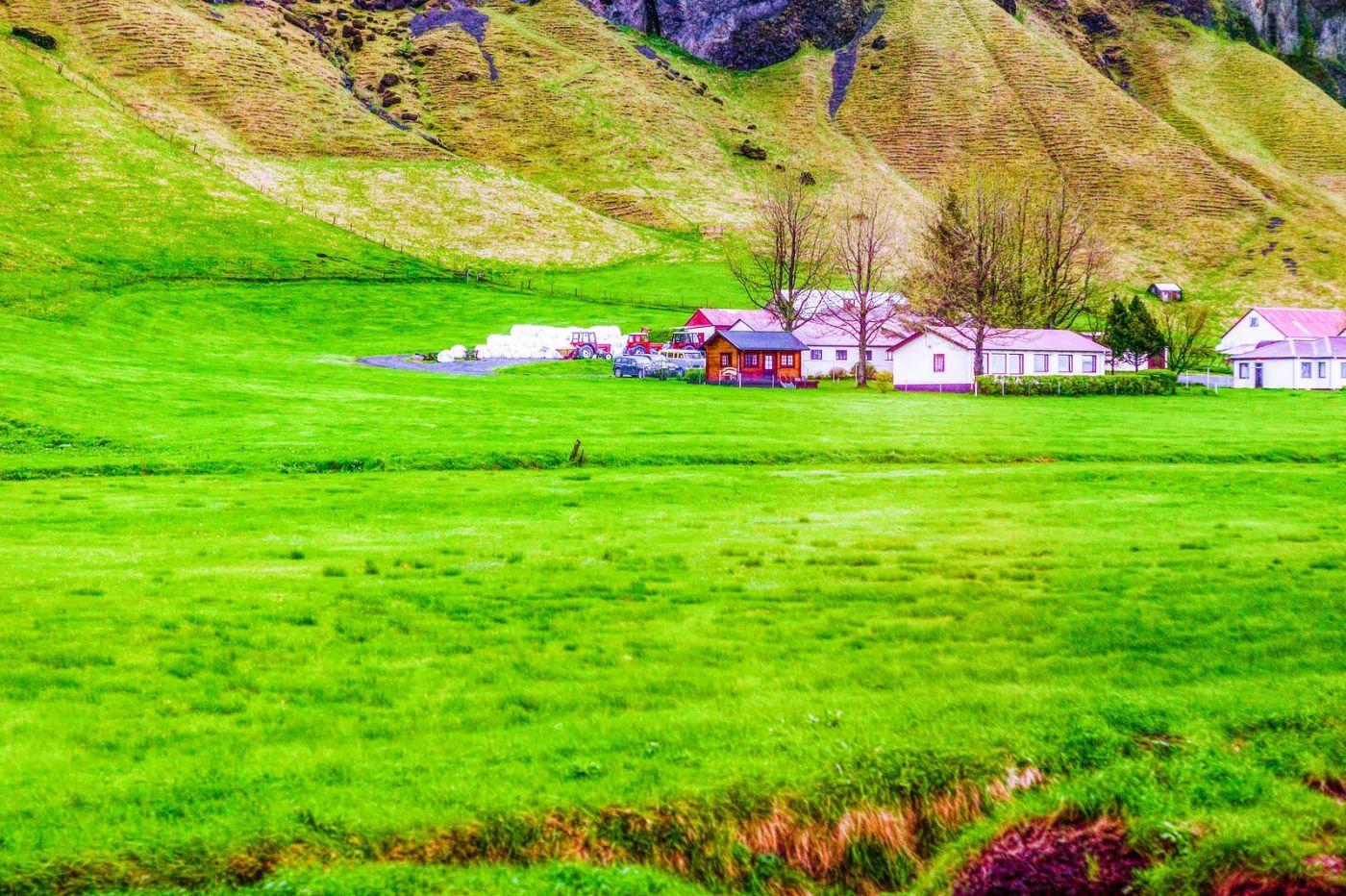 冰岛风采,大山民舍羊群_图1-15