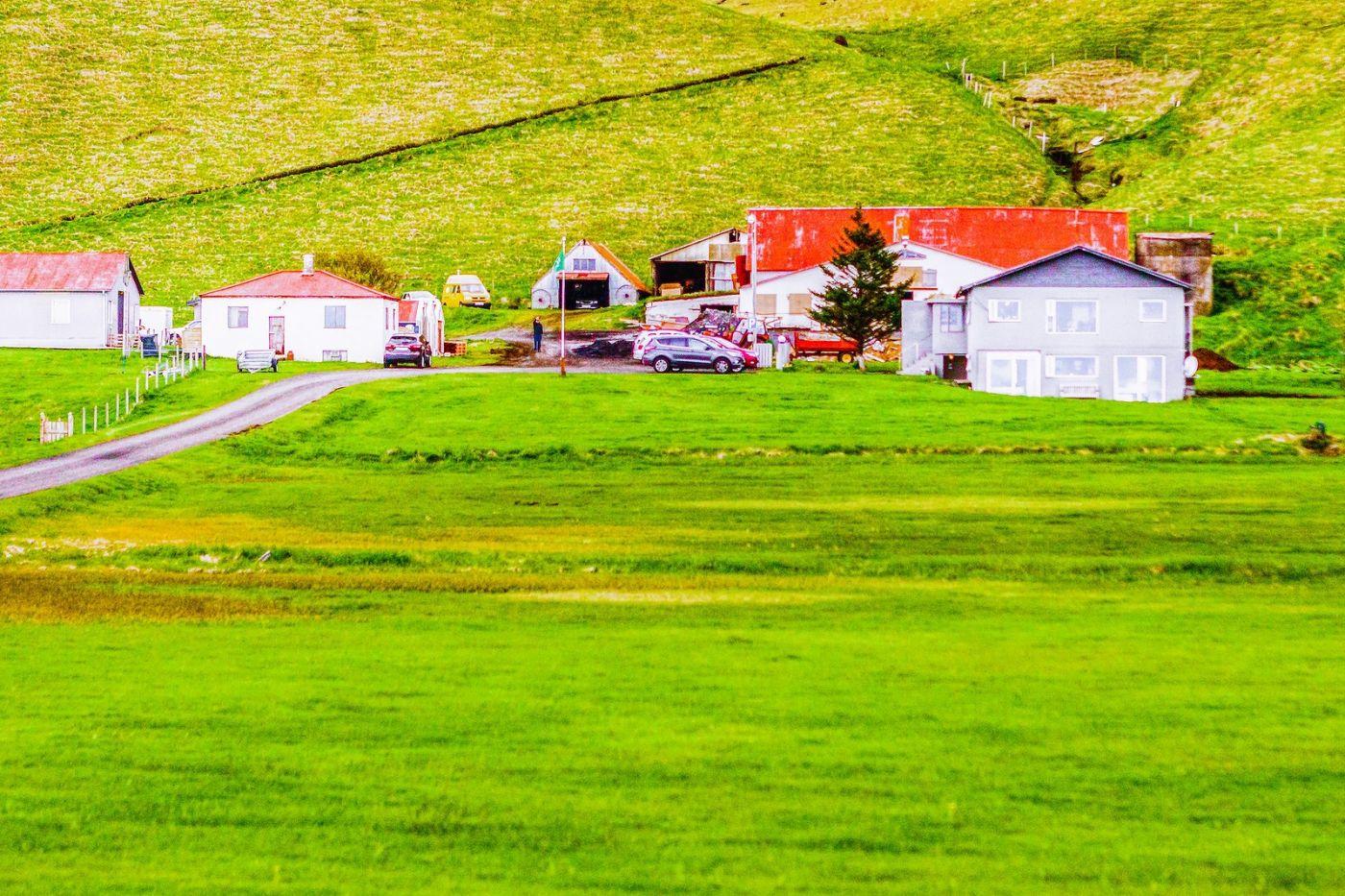 冰岛风采,大山民舍羊群_图1-10