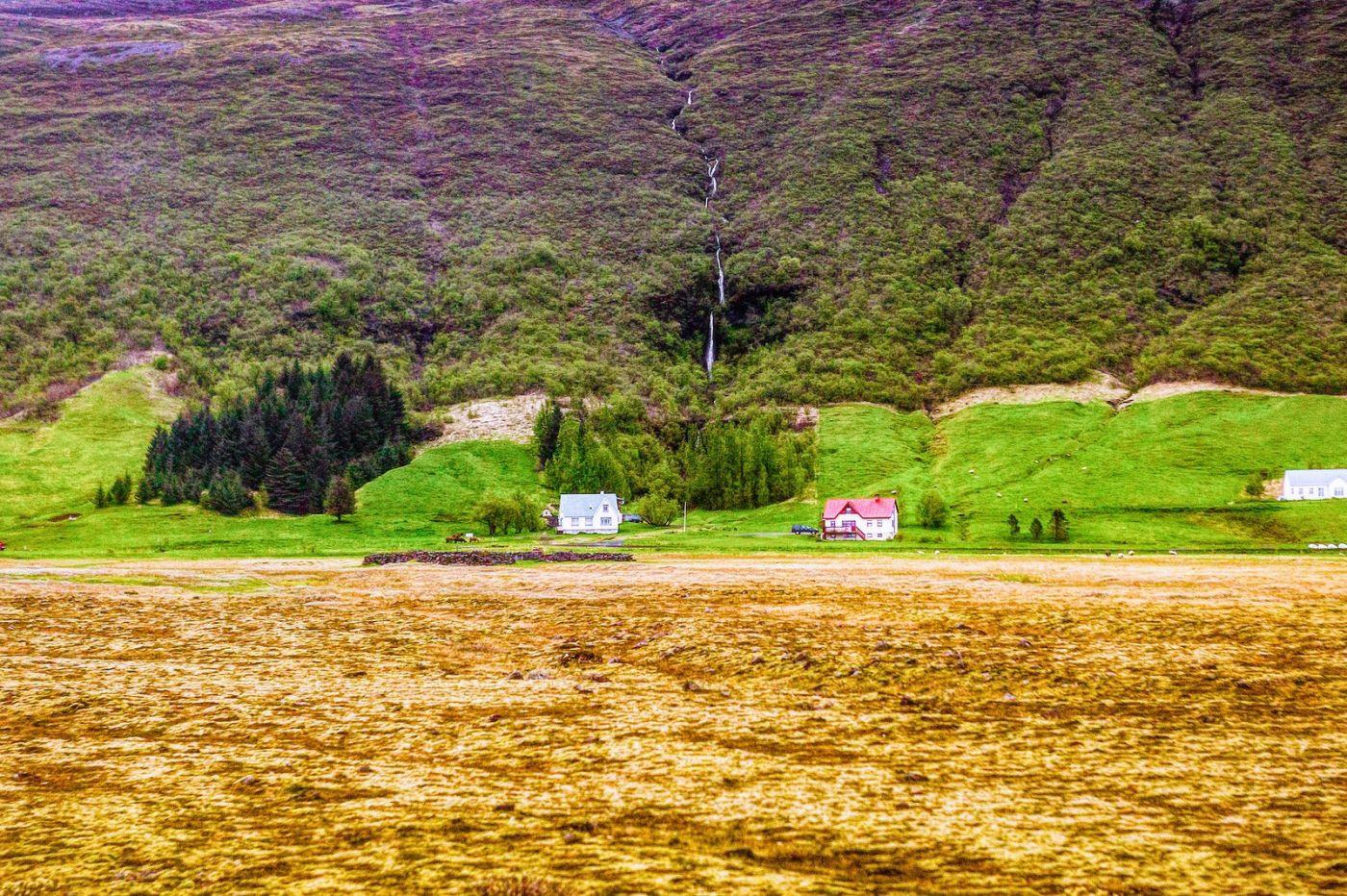 冰岛风采,大山民舍羊群_图1-11