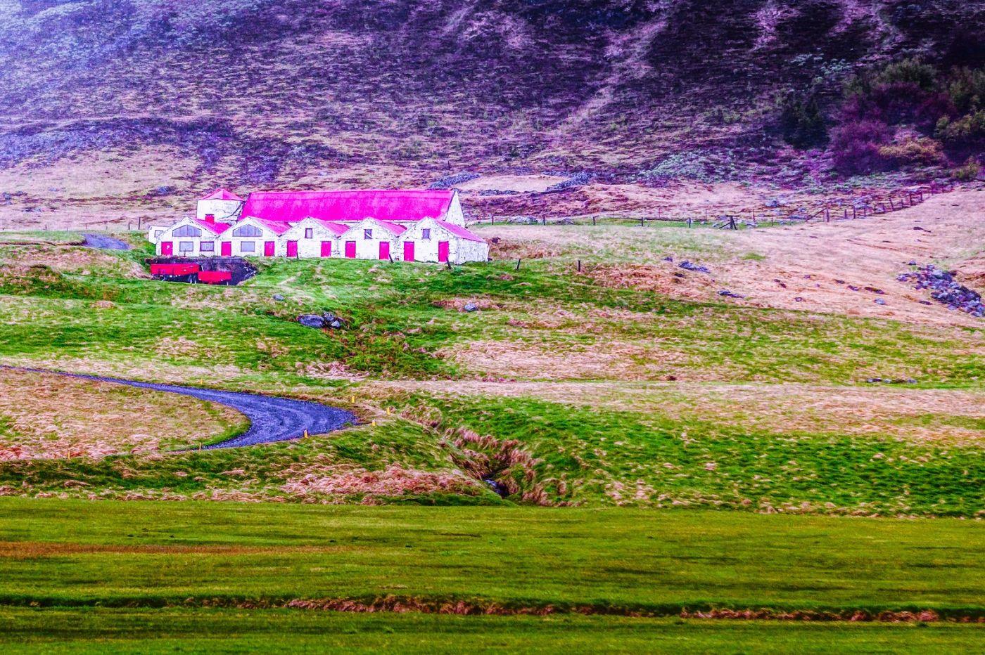 冰岛风采,大山民舍羊群_图1-7