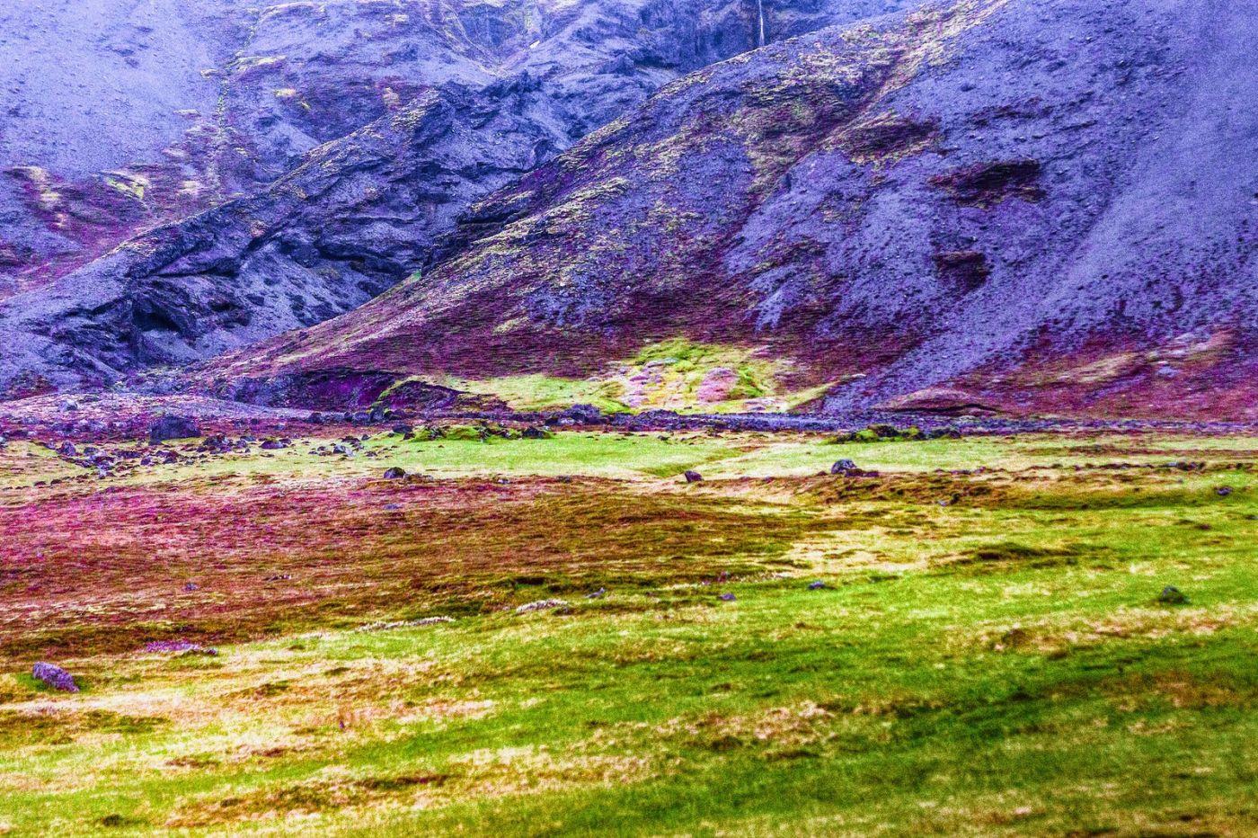 冰岛风采,大山民舍羊群_图1-6
