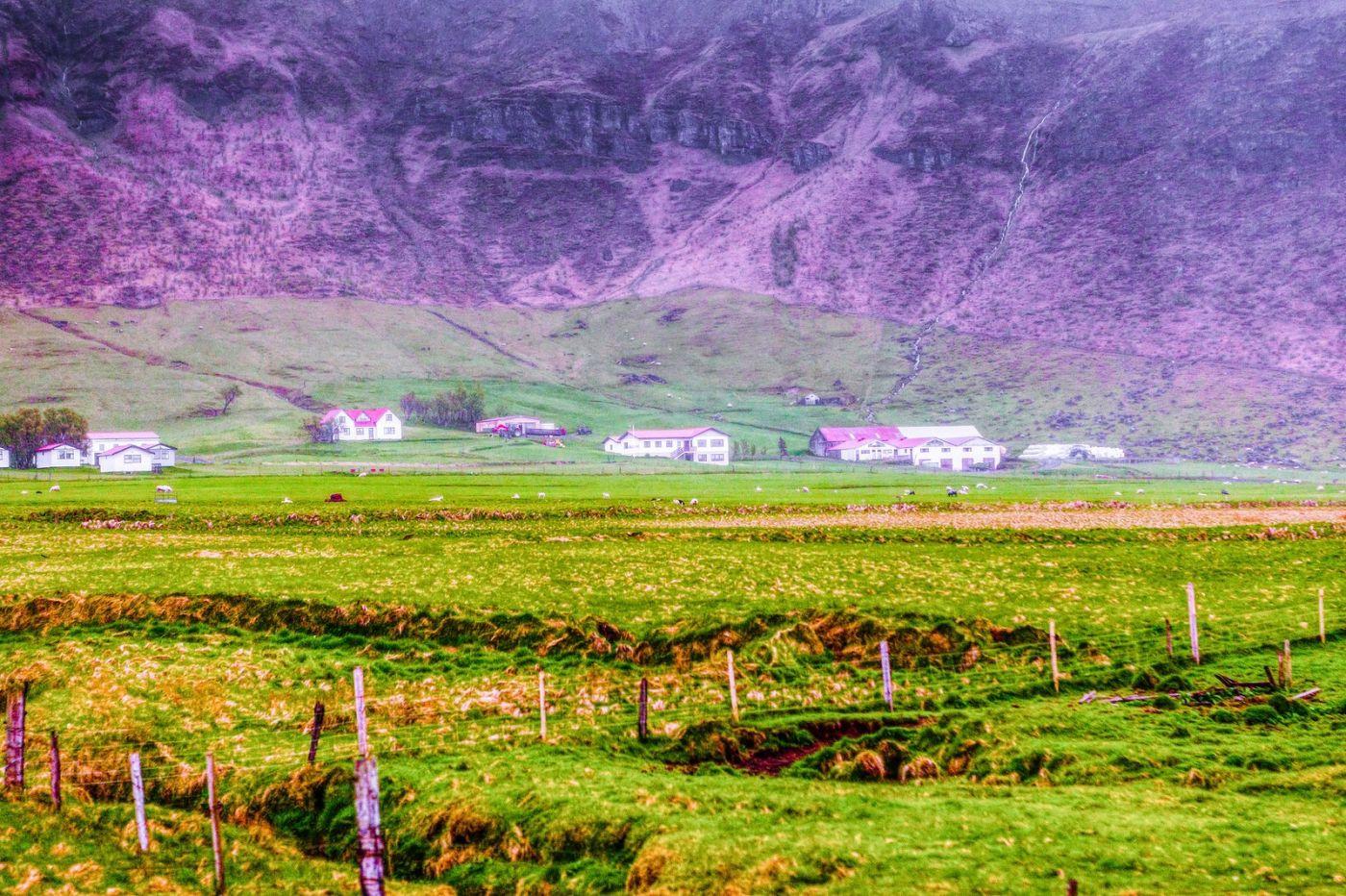 冰岛风采,大山民舍羊群_图1-25