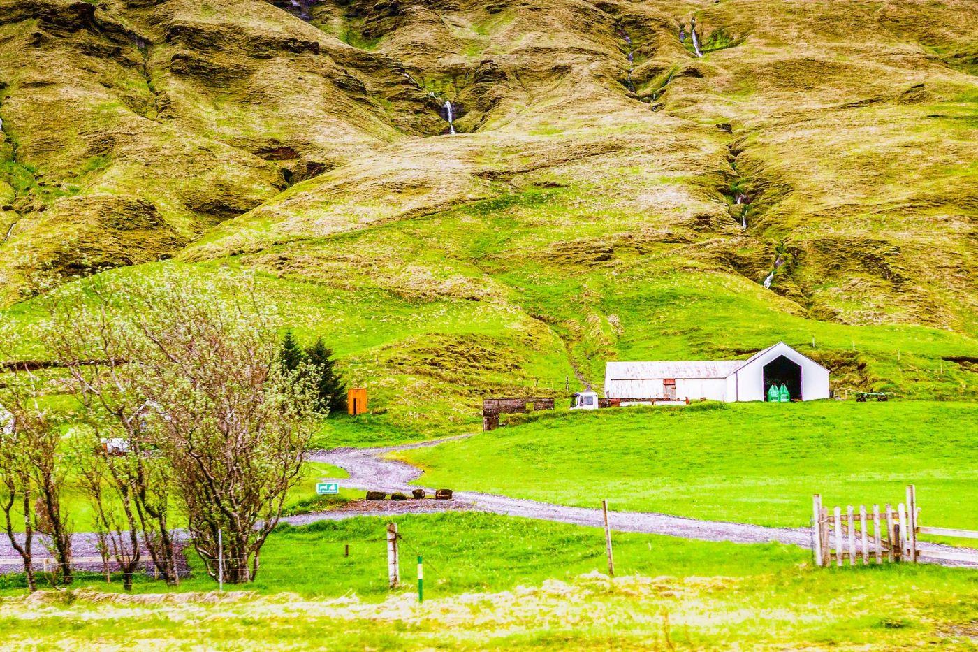 冰岛风采,大山民舍羊群_图1-26