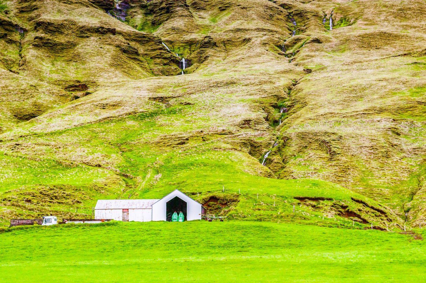 冰岛风采,大山民舍羊群_图1-28