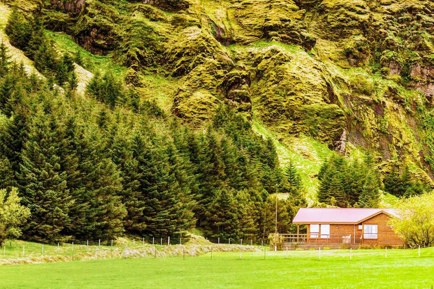 冰岛风采,大山民舍羊群_图1-31